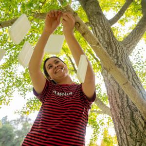 Art studio major Rocio Perez installs an art piece about people being more present in nature