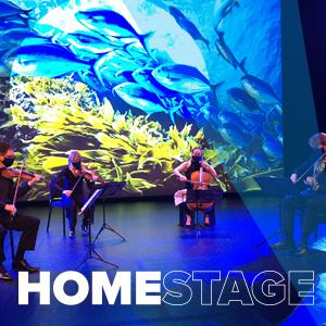 Fry Street Quartet playing their instruments in front of undersea image with closeup of fish. Text says: HOMESTAGE
